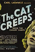 Image of The Cat Creeps