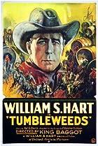 Image of Tumbleweeds