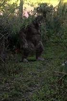 Image of Destination Truth: King Tut's Curse/Swamp Ape