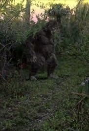 King Tut's Curse/Swamp Ape Poster