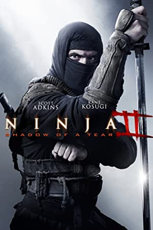 Shadow (2013) Download on Vidmate