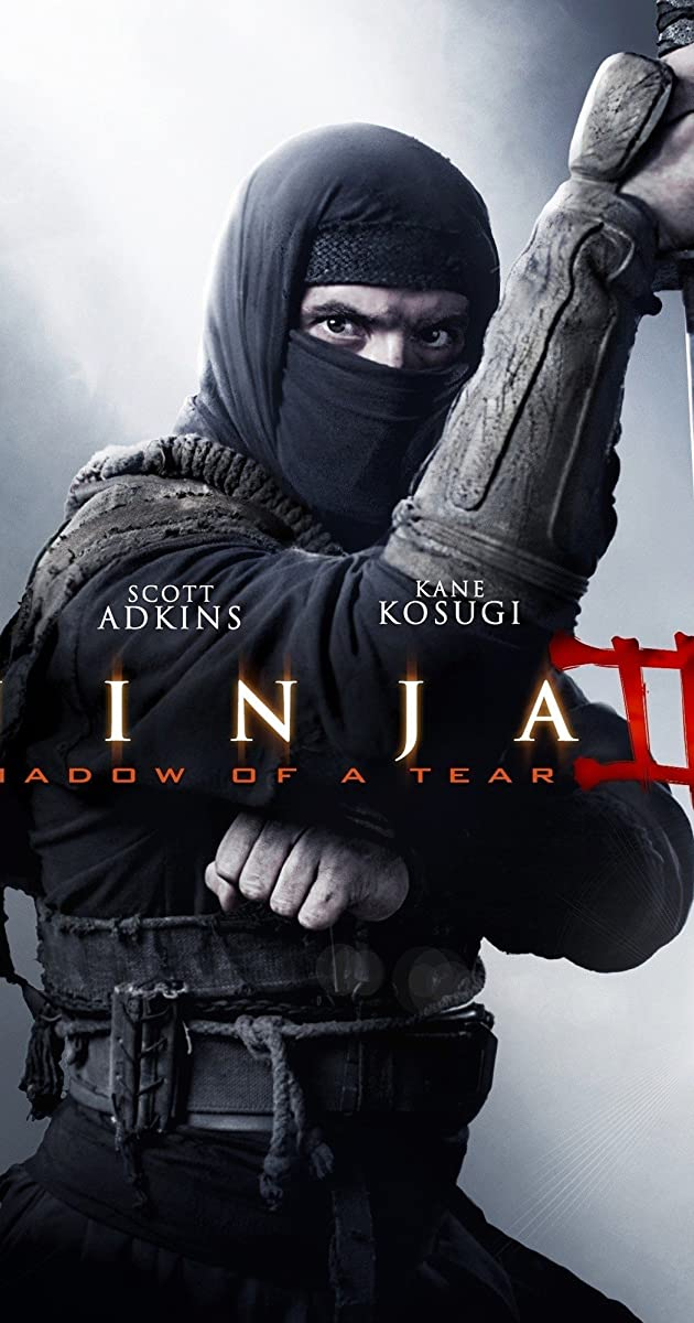Ninja: Shadow of a Tear 2013 BRRip