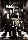 """""""The Addams Family"""""""