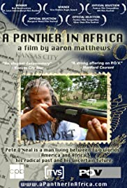 A Panther in Africa Poster