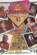 WCW Slamboree 1993