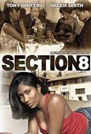 Section 8 Poster