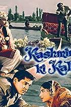 Image of Kashmir Ki Kali
