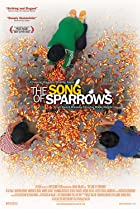 Image of The Song of Sparrows