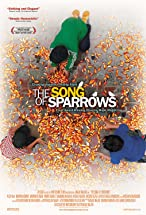 Primary image for The Song of Sparrows