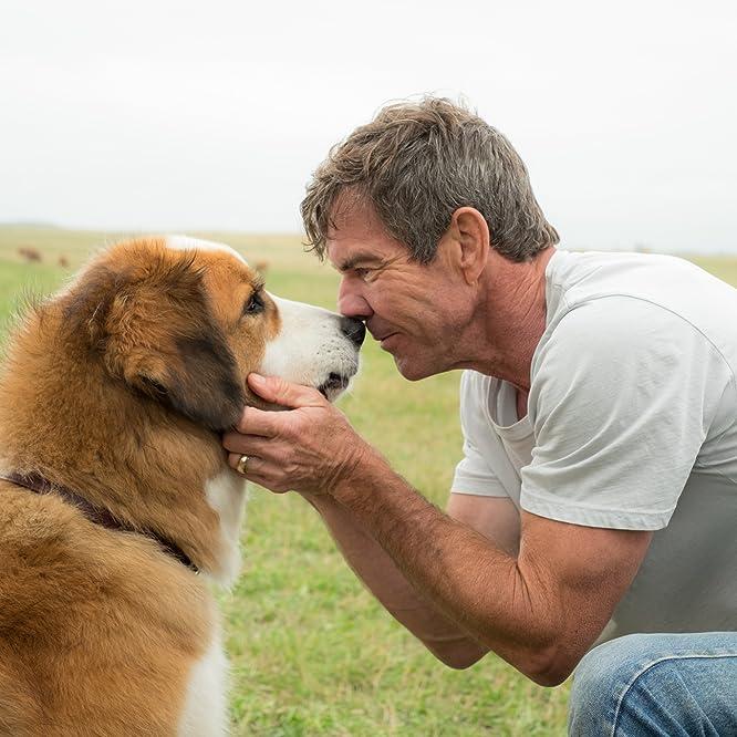 Dennis Quaid in A Dog's Purpose (2017)