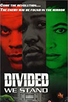 Image of Divided We Stand