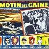 Humphrey Bogart in The Caine Mutiny (1954)