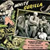 Ray Corrigan, Francis Ford, Charles King, George J. Lewis, and Lorraine Miller in The White Gorilla (1945)