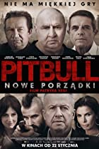 Image of Pitbull. Nowe porzadki