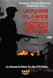 Ukraine in Flames Poster