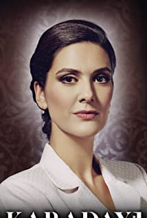 Bergüzar Korel Picture