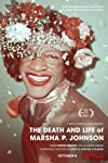 Netflix Doc 'The Death and Life of Marsha P. Johnson': Did Director David France Steal a Filmmaker's Research?