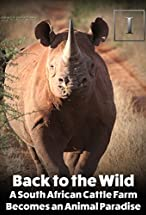 Primary image for Back to the Wild