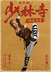 The Legend of Shaolin Temple poster