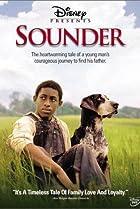Image of Sounder