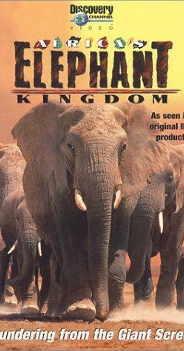 a review of the movie the elephant kingdom