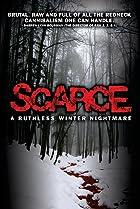 Image of Scarce
