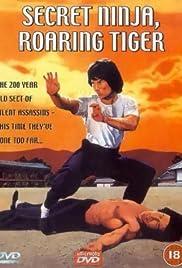 Secret Ninja Poster