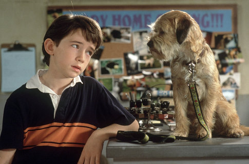 Liam Aiken in Good Boy! (2003)