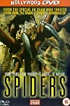 Spiders 3D Gets Theatrical Debut This February