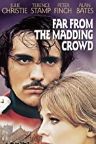 Image of Far from the Madding Crowd