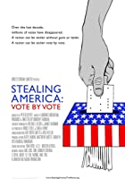 Image of Stealing America: Vote by Vote