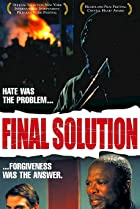 Image of Final Solution