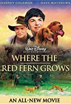 Primary image for Where the Red Fern Grows