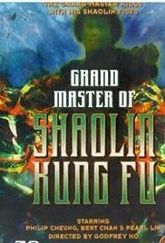 Da Mo shen gong Poster