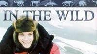 Polar Bears with Ewan McGregor