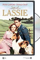 Image of Son of Lassie