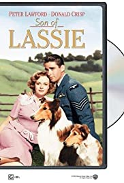 Son of Lassie (1945) Poster - Movie Forum, Cast, Reviews