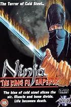 Image of The Ninja