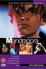 Mandragora Poster