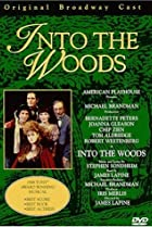 Image of American Playhouse: Into the Woods
