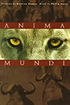 Image of Anima Mundi