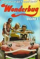 Image of Wonderbug