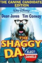 Image of The Shaggy D.A.