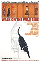 Walk on the Wild Side (1962) Poster