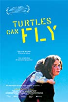 Image of Turtles Can Fly