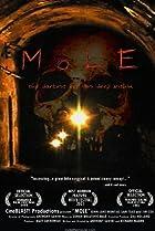 Image of Mole