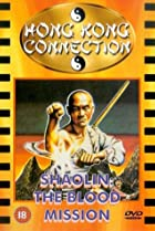 Image of The Fourth Largest Shaolin Temple