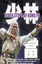 Image of Kung Fu of Seven Steps