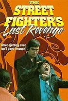 Image of The Streetfighter's Last Revenge