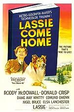 Lassie Come Home(2017)